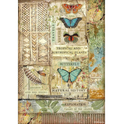 Stamperia Rice Paper A4 Amazonia Butterfly